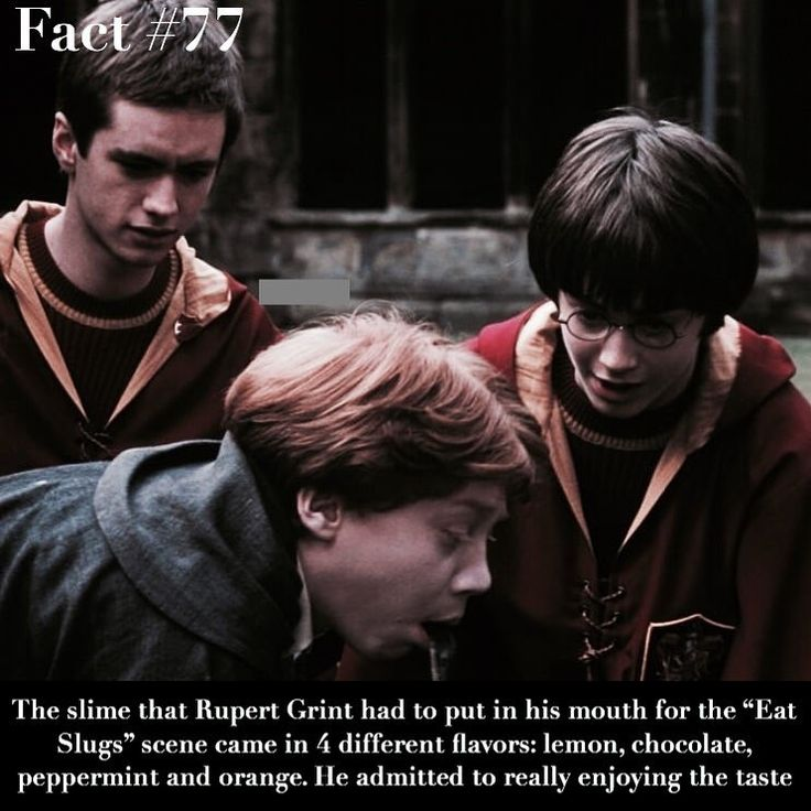 All things harry potter on instagram tag someone who