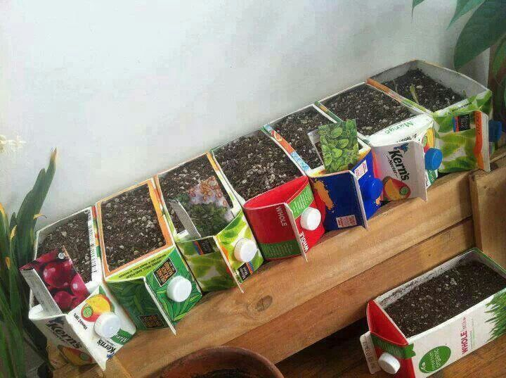 Recycled cartons into planters/seed starters.: Gardens Ideas, Milk Cartons, Plants, Seeds Start, Herbs Gardens, Cool Ideas, Planters, Great Ideas, Juice Cartons