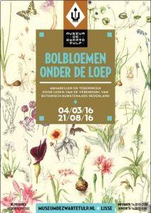 bolbloemen-onder-de-loep
