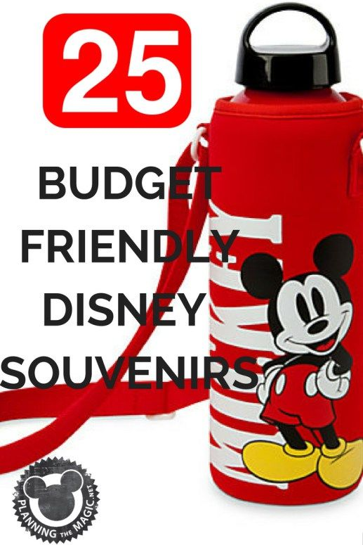 25 Ways To Save On Disney Souvenirs | You can spend an insane amount of money on souvenirs at Disney World.  You don't have to though.  You can spend a fraction of the money and get double the stuff.  II put together this comprehensive list of budget-friendly Disney souvenirs. At the time that I write this (late 2016), an Elsa costume is $70 at Disney World and $14 at Walmart. Be the family that has the same vacation for a fraction of the cost. For more information visit…