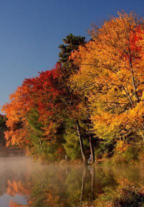 Love fall!!!