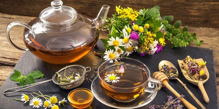 Conheça neste artigo 10 razões que provam por que todo mundo deveria tomar chás todo dia!