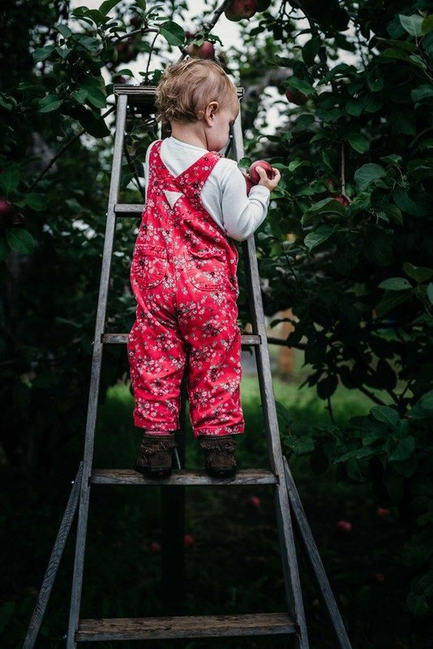 The simple fun of a day at the orchard. Documentary photography. Ottawa photographer.
