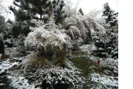 Občanské sdružení přátel pietního parku Draháň - Fotoalbum - Fotogalerie - ...zima přichází (2016) - 5