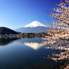 ALT  PÅ DENNE SIDE! (Rejser - Billeder - Fakta - Visum - Vaccinationer - Klima - Kort )  Rejser Japan: Alt om din ferie til Japan  Albatros-travel.dk
