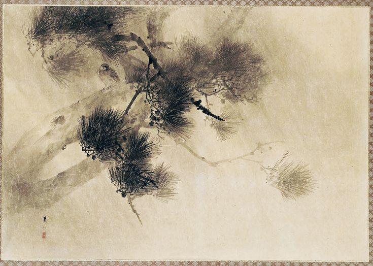 Sparrow and Pine in the Rain. Uchu matsu suzume 雨中松雀. Japanese Hanging Scroll. Meiji era. late 19th century–early 20th century. Suzuki Kason. MFA BOSTON.