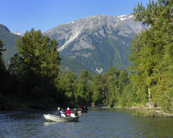 Bears, Bears and More Bears | British Columbia Wildlife Watching Holiday Touring Holidays in Canada from Frontier Canada