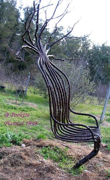 arbre insolite by Peter Cook et Beckly Northey