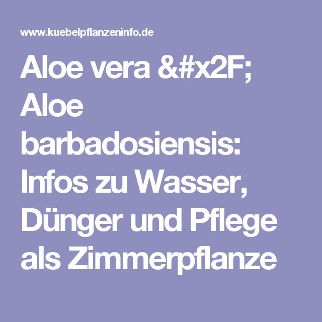 17 Best Ideas About Aloe Vera Pflanze On Pinterest | Aloe Pflanze ... Aloe Vera Pflanze Pflege Anwendung