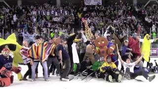 UNH Wildcats' Official Harlem Shake