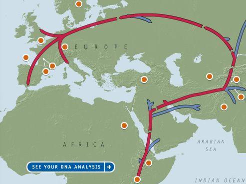 DNA migration Map