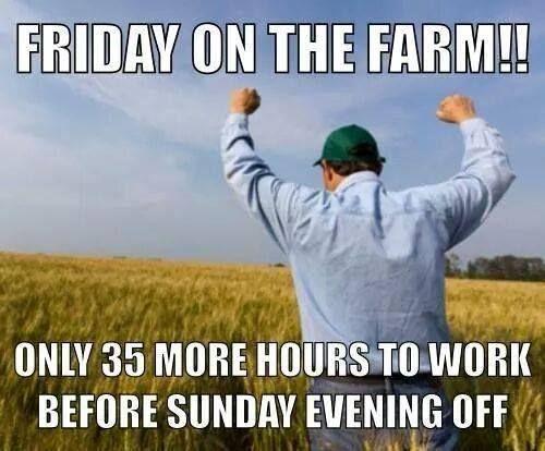 Just 35 hours to go! #keeponfarming #farmingforever #fridaymadness https://www.pinterest.com/FarmersGuardian/funny-farming/…