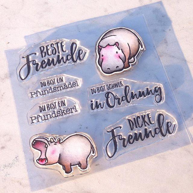 """Ein neues Stempelset von Kuricke, mit Hippo und coolen Texten zum Thema Freundschaft. gern mit ein bisschen """"mehr Pfunden""""  Pfundskerl, Pfundsmädel, Beste Freunde Stempel"""