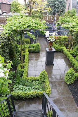 patio garden in the Netherlands