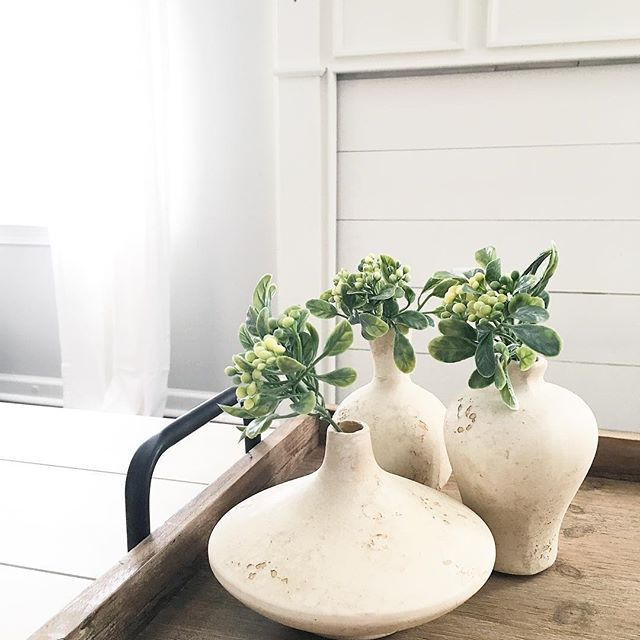 Simplicity is my favorite 🌿  Sharing for some Tuesday hashtags. Would @mitchellmadefarmhouse @southernmagnoliamomma and @our_forever_farmhouse like to play along?  #seasonsofsimplicity #gagaforgreenery #rustneverliestuesday (vases) #timewornandtattered (vases) #myfarmhousefav
