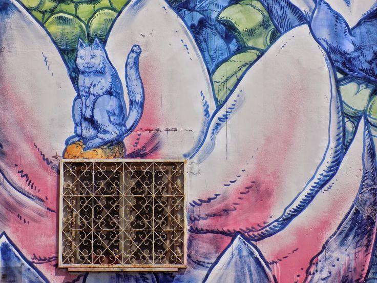 "Viaggi con ricordi: ROMA: ""street art""! (6)"