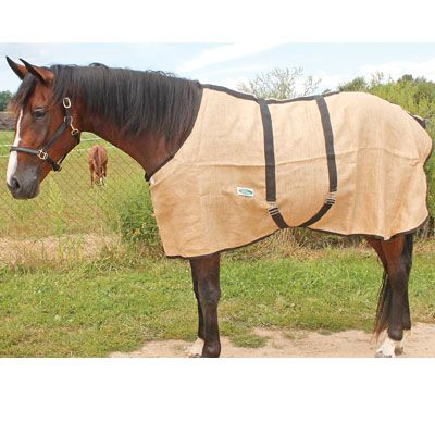 Midweight Natural Burlap Horse Sheet By Country Pride Good For Cooling Out A Who Rips Coolers Or Doesn T Like To Be On Crossties