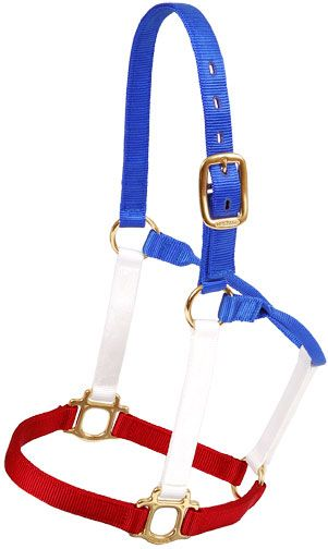 Red, White, and Blue Halter | ChickSaddlery.com