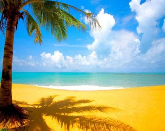 Cozy Beach With Clear Sky 10ft x 10ft Backdrop Computer Printed Photography Background XLX-909