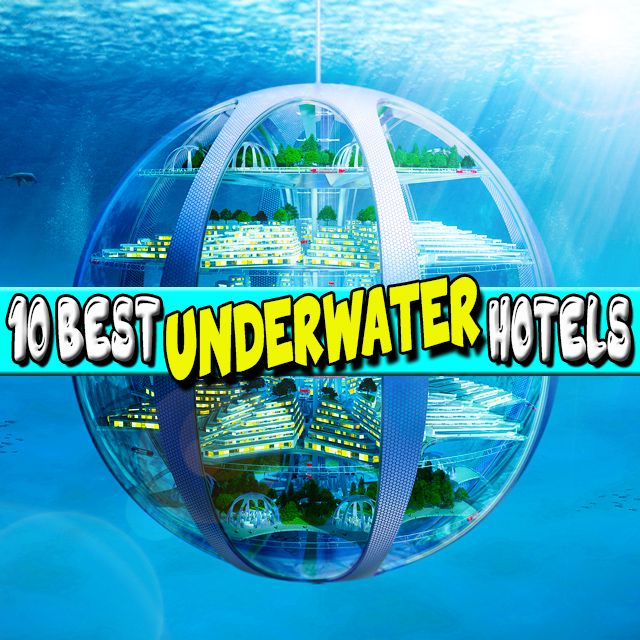 Read up on our ultimate 10 #best #underwater #hotels! These incredible hotels really take #sleepingwiththefish to a whole new level! Visit our website for more information, link in bio.