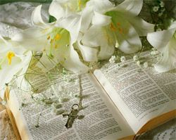 easter+scriptures | Read these profound Biblical verses related to Easter: