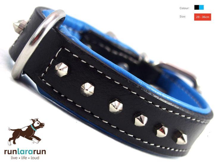 "runlararun - the best dog collars, leads and harnesses - ""Zandra"" Collar - 1 Row Hex Studs, $29.95 (http://www.runlararun.com/zandra-collar-1-row-hex-studs/)"