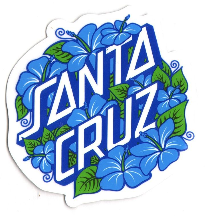 Santa Cruz Skateboard / Surf Sticker - surfing skating sk8 skate board new: Amazon.co.uk: Car & Motorbike