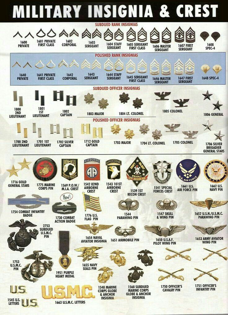 us military insignia chart: 13 best military rank structure charts images on pinterest