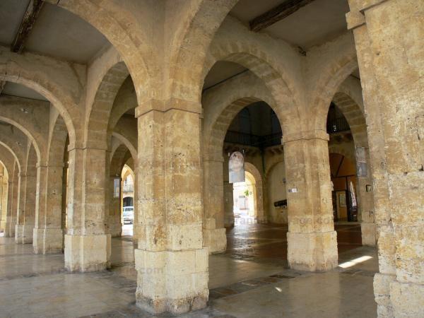 Vous pouvez aller à la découverte de la ville en visitant la bastide de Fleurance, un édifice fondé au XIIIe siècle. Et passez un agréable séjour en notre compagnie