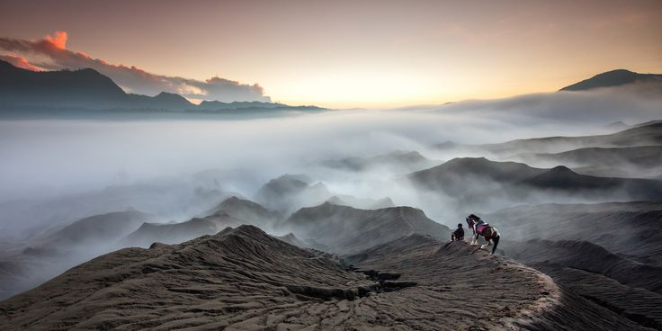 © Gunarto Gunawan. All rights reserved.  Bromo Tengger Semeru National Park is a national park in East Java, Indonesia. To shoot this moment, I climbed the hills at the foot of Mount Bromo in the early morning with my horse.