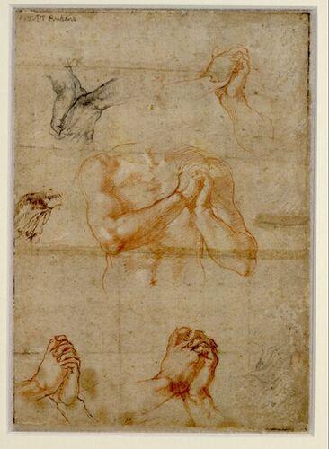 Michelangelo, Männlicher Oberkörper mit gefalteten Händen sowie Handstudien, 1510-11 © Albertina, Wien  #Michelangelo #Renaissance #Drawing #GraphicArt #GraphicCollection #Masterpiece