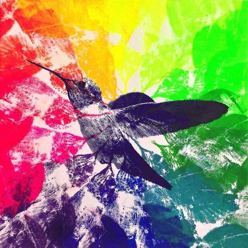 Colibrí en Colores
