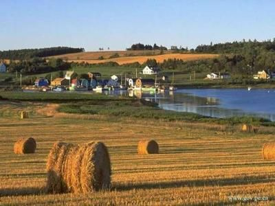 Looks like a picture postcard - but it really looks like this. This is my home place, Prince Edward Island, Canada's smallest province (140,000 people) located in the Atlantic about 8 hours drive north of Maine.