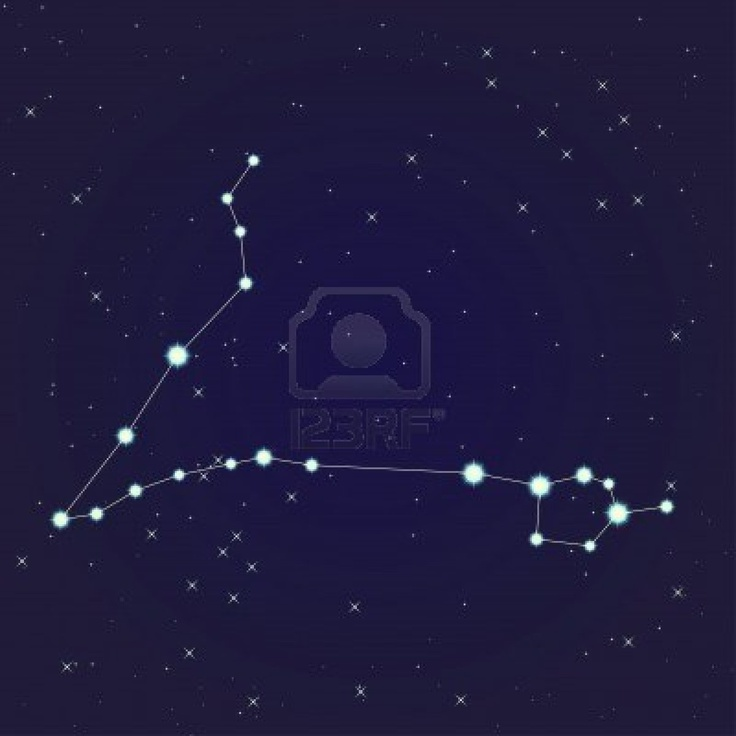 Pisces constellation | Tattoo ideas and piercings ...