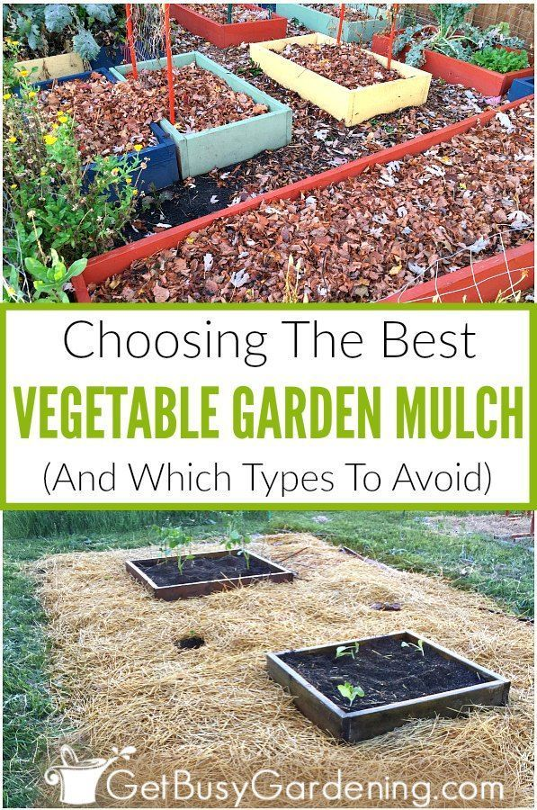 Many Types Of Common Mulching Materials Are Made For Landscapes And Aren T Good To Use In A Ve In 2020 Mulch For Vegetable Garden Garden Mulch Vegetable Garden Design