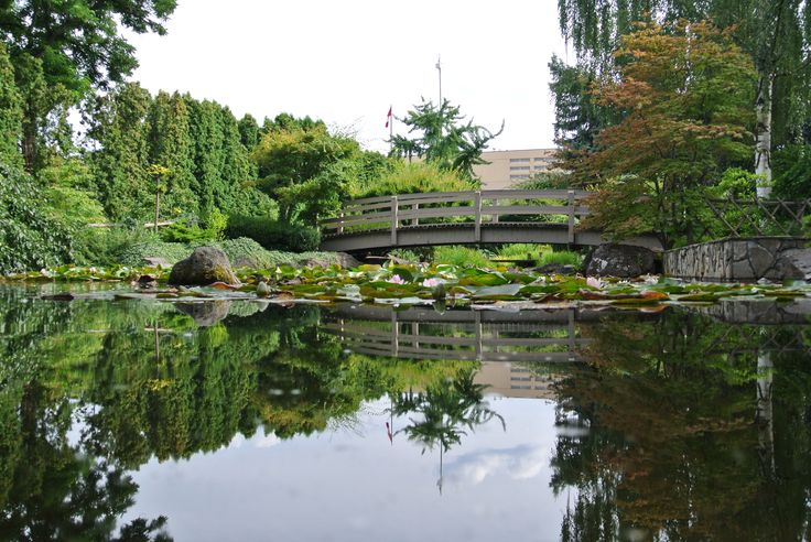 Kasugai Gardens are right downtown behind Kelowna City Hall.   www.kelownainnandsuites.com