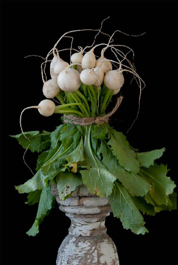 Turnips  © Lynn Karlin