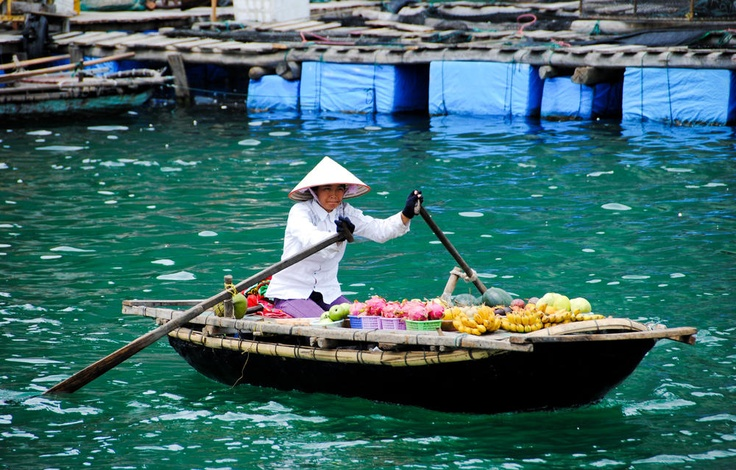 Photo of the Day - #Vietnamese #Food #Transportation - #Ha #Long #Bay, #Vietnam - While on a tour of Ha Long Bay off the East Coast of #Vietnam, I spotted this woman as she transported various fruits across a section of the bay. No driving or walking can really be done around the natural and man-made islands of Ha Long Bay making this style of commuting, regular. Photo from #absolutevisit at www.absolutevisit.com - all images Creative Commons Noncommercial