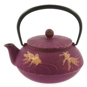 nanbutetsu iwachu tea pot