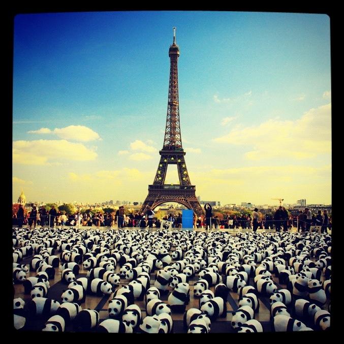 Earth Hour 2010 - Paris