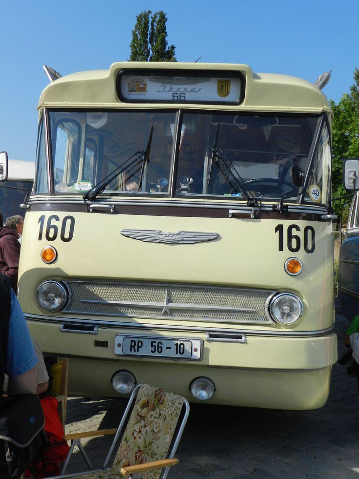 Ikarus 66 autóbusz az NDK-ból!