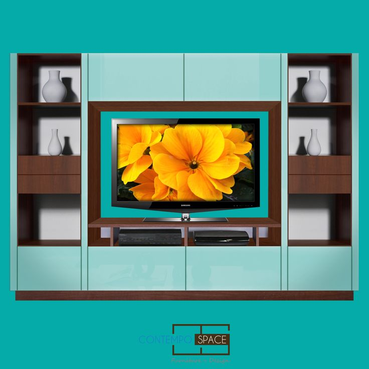Entertainment Center | Wall Unit | Storage Solution to Small spaces!