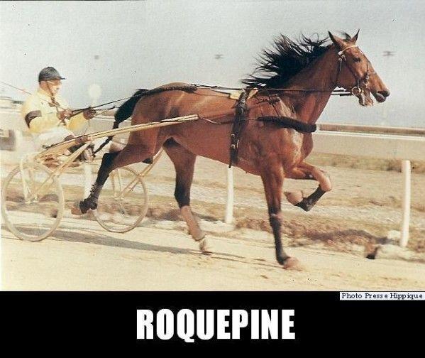 Roquepine-et-Henri-Levesque.jpg