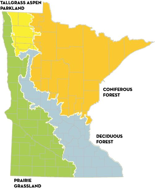 1000 Images About Maps Of Minnesota On Pinterest