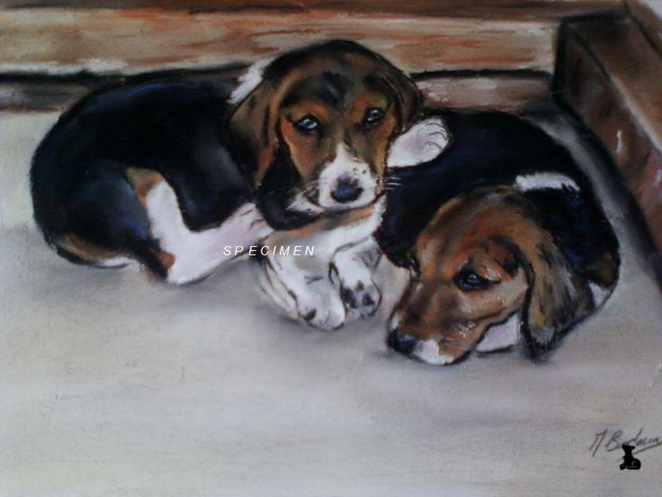 Souvent 135 best Pastel sec images on Pinterest | Painting, Pastel  GX23