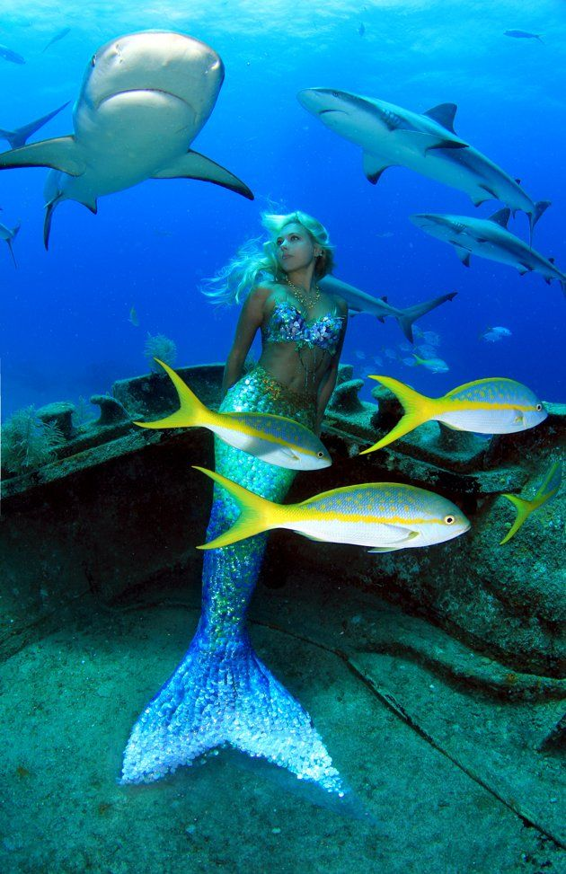 Under the Sea With Real Life Mermaid Hannah Fraser  This Australian artist and environmentalist turned her passion for mermaids into a unique career.