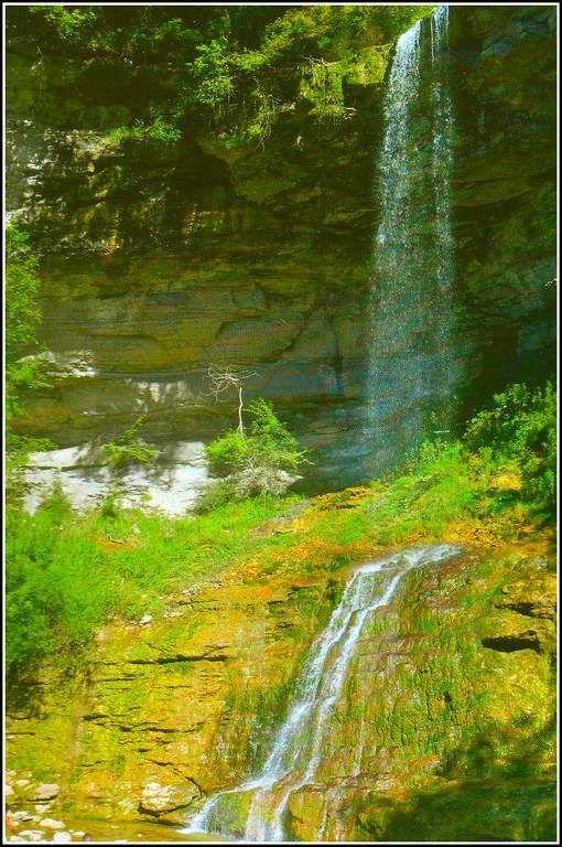 La cascade de la queue de cheval est une chute d'eau du massif du Jura haute de 60 m de haut, située près de Saint-Claude, dans le haut-Jura, Elle franchit en deux sauts une dénivellation d'une soixantaine de mètres, pour se jeter dans le petit torrent...