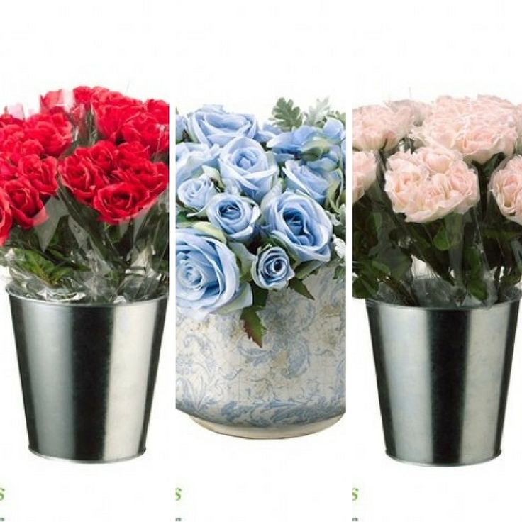 You really can't pick one, can you? #Roses