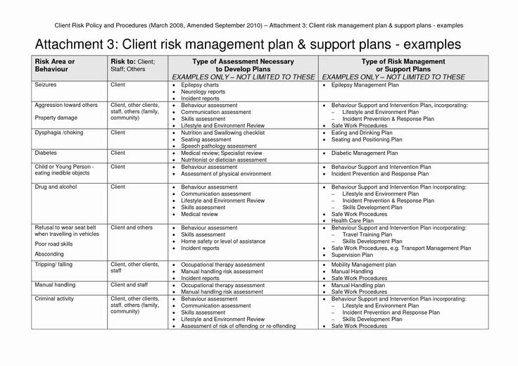 Management Plans Risk Plan Example Project Sample Pdf For