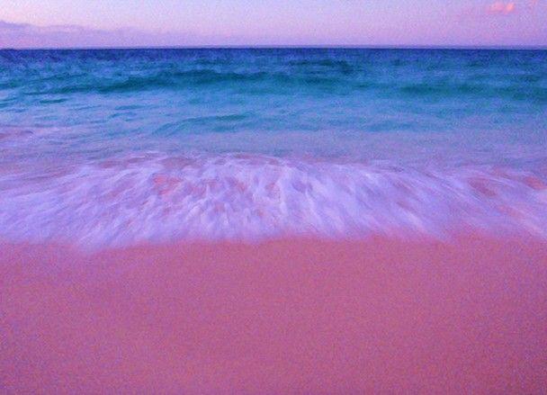 Amazing Pink Beach- Komodo Island